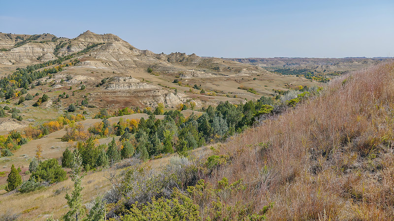 The Badlands of North Dakota at Elkhorn Ranch