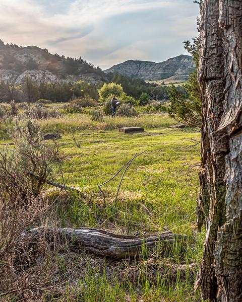 Theodore Roosevelt's Ranch Home Stood Here, Elkhorn Ranch, North Dakota