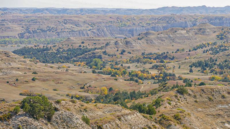 Overlooking Theodore Roosevelt's Elkhorn Ranch on the Little Missouri River, North Dakota