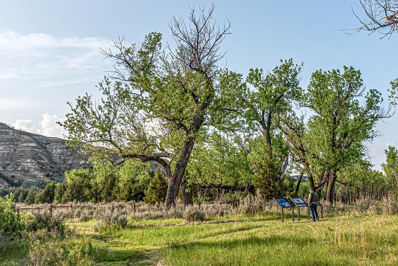 Theodore Roosevelt's Ekhorn Ranch in Western North Dakota