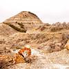 Petrified rocks near the deuce portion of the Maah Daah Hey trail