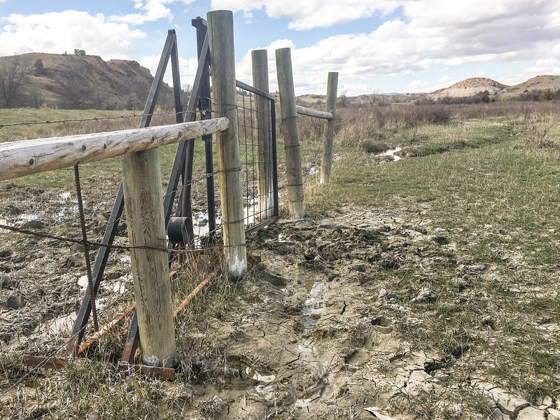 First gate, wet spring.  The Maah Daah Hey, North Dakota