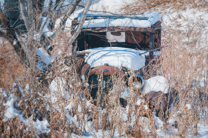 Ford truck hiding in the woods