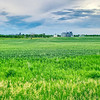 green fields outside of wilton