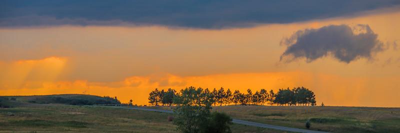 orange after the storm