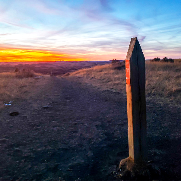 Petrified Forest Trail Marker at sunset