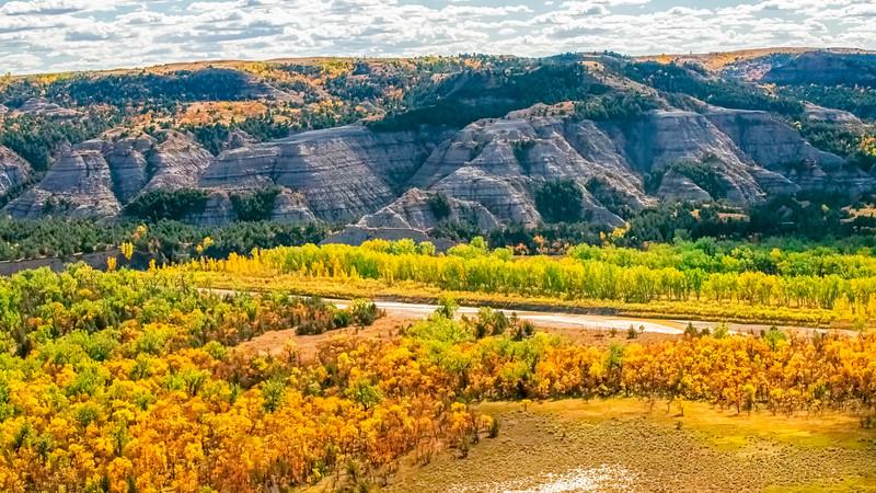 Yellow Little Missouri River bottom in fall