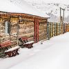 log cabin in the Park