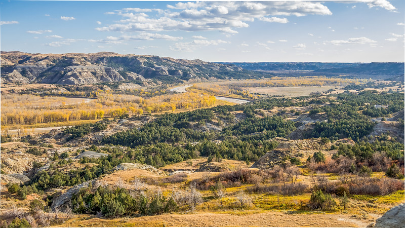 A Golden Fall on the Little Missouri River, Theodore Roosevelt National Park