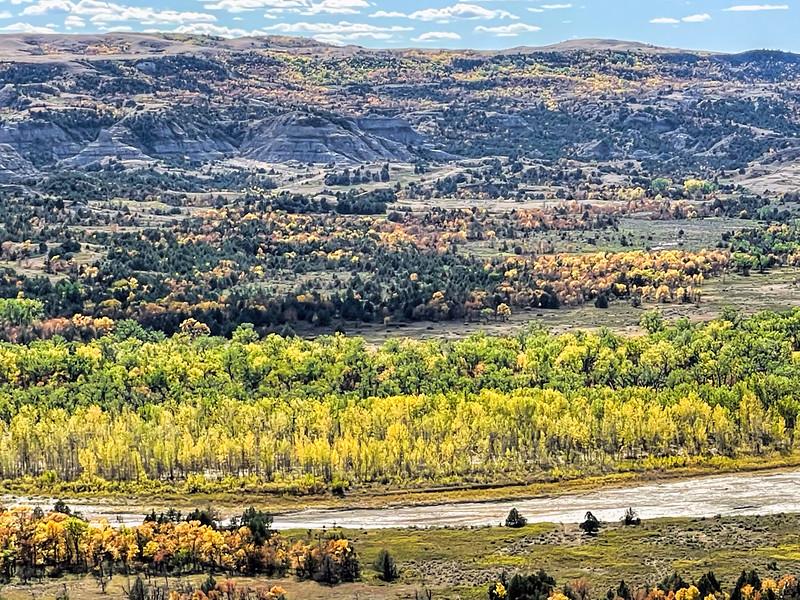 Fall in the Little Missouri River Bottom