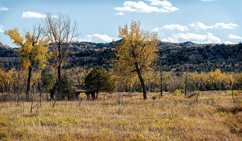 A hidden shelter in the Theodore Roosevelt National Park