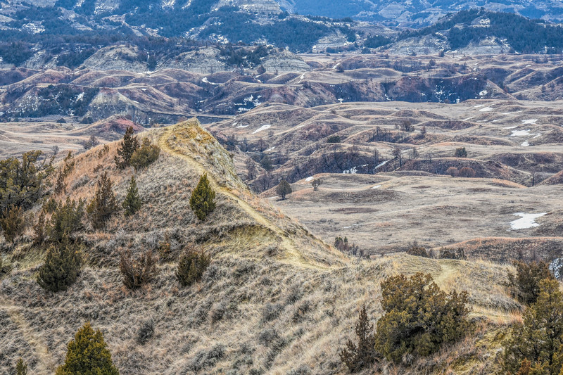 Boicourt Trail, South Unit of Theodore Roosevelt National Park, North Dakota