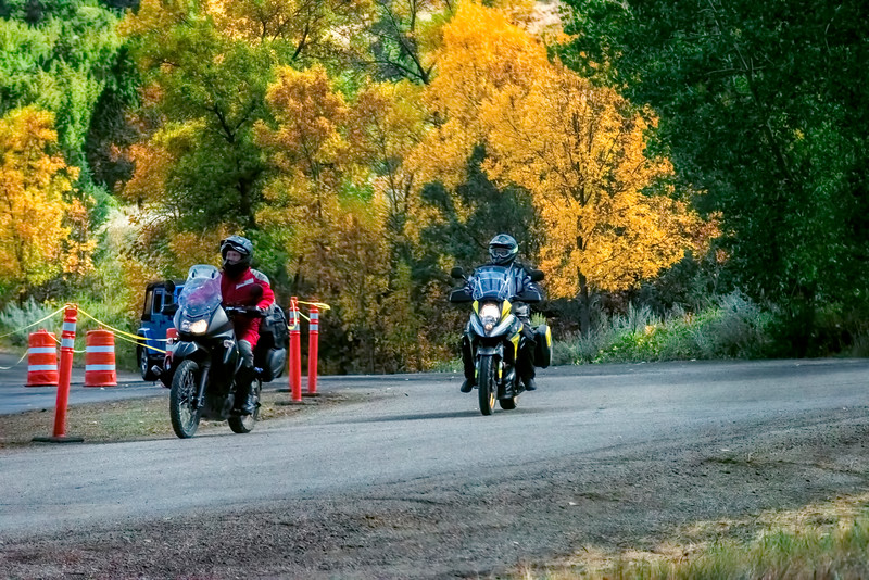 Two motorcycles in fall trees