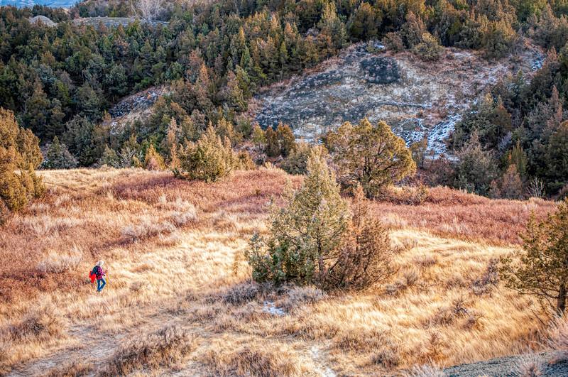 Through Prairie Grass on Caprock Coulee Trail