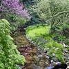 The Laurelwood Arboretum