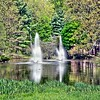 Laurelwood Arboretum in Wayne, New Jersey
