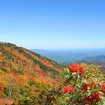 Beautiful colorful fall mountain landscape.