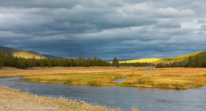 Evening light along the Madison river in Yellowstone NP