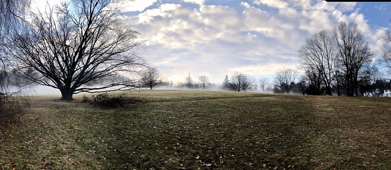 Groundfog after a thaw in East Rock Park, Hamden, CT. 2018