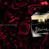 Dolce&Gabbana_Desire_EDP_Creative-Pack-Shot_02
