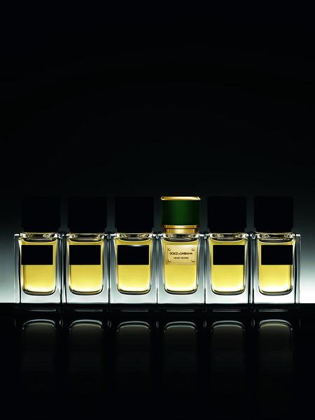 Dolce&Gabbana_Velvet-Vetiver_Background-Black_02
