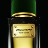 Dolce&Gabbana_Velvet-Vetiver_Background-Black_01