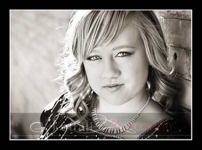 Beautiful Morgan 14