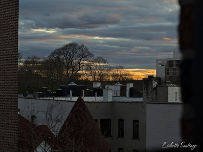 The sunsetting in Brooklyn, New York