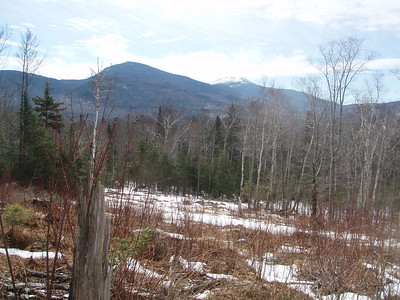 Clear cut areas provide several vistas, offering spectacular views of the Franconia Ridge, Mt. Garfield, Mt. Hale, North Twin Mountain, Haystack Mountain, Scarface Mountain, Flat Top, and the Sugarloaf Mountains.