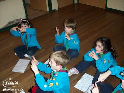 Beavers learning sign language