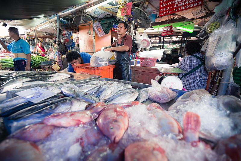 Superbes poissons pour pas cher :)