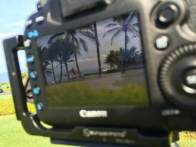 Le paradis doit ressembler à ça !