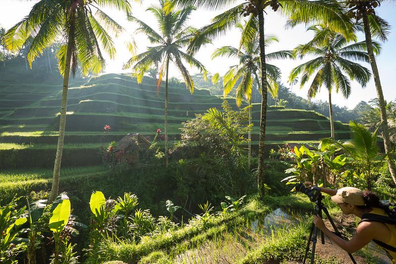 Un jardin d'Eden que pour nous !