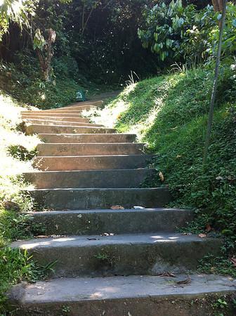 Le chemin qui mène aux cascades