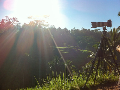Sunrise sur les rizières