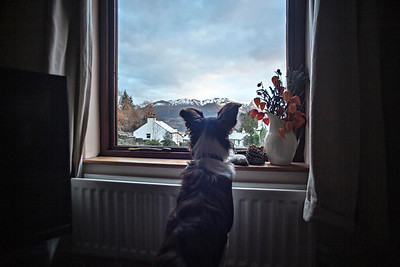 Tue 29th Nov : Katie looks out in wonder