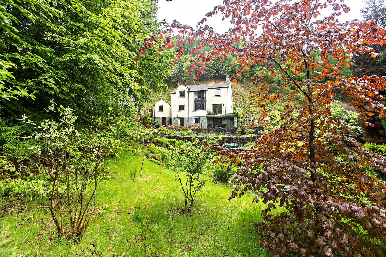 Sun 21st May : Beck View : from the other side of the beck