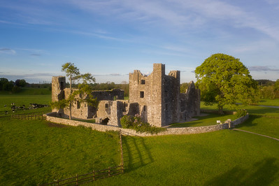 Bective Abbey 7