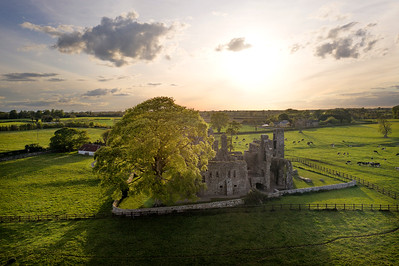 Bective Abbey 4