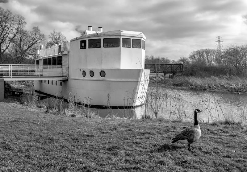 The Ark, Midsummer Meadow, Northampton