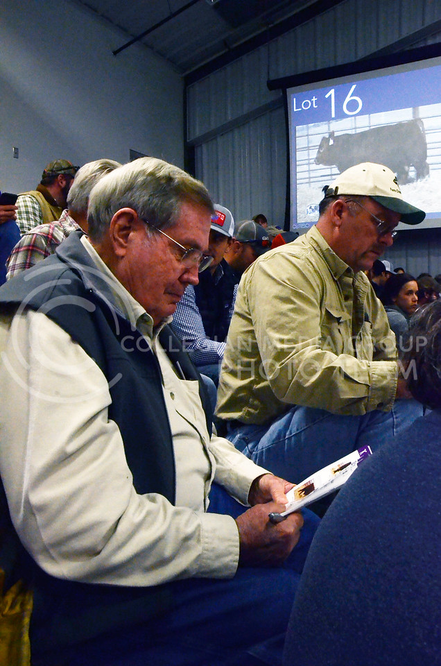 Attendees record notes as cattle are shown at Cattlemen's Day on Friday, March 2, 2018, at Stanley Stout Center, 2200 Denison Ave.