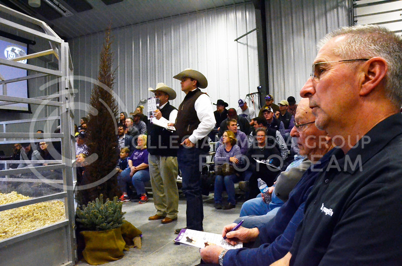 Attendees watch as cattle are shown at Cattlemen's Day on Friday, March 2, 2018, at Stanley Stout Center, 2200 Denison Ave.