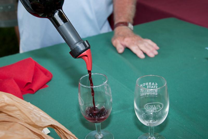 NJ Wine Fest 20090808 017