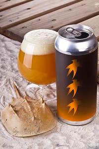 Aslin Brewing Company: Triple Orange Starfish