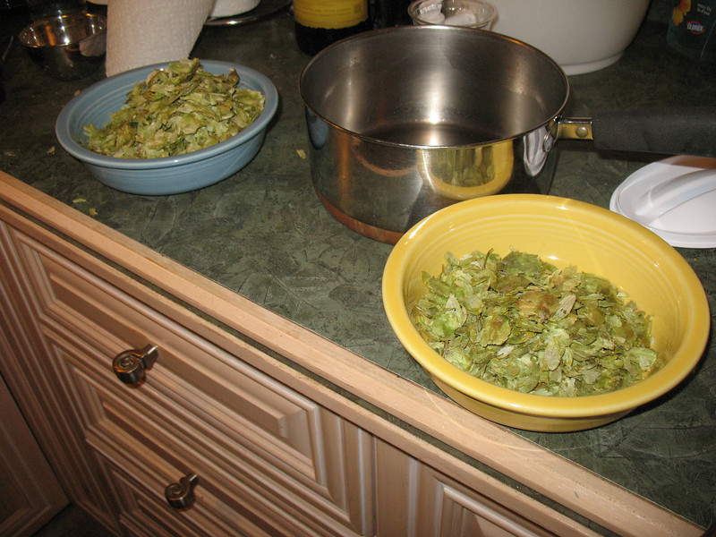 hops, homebrewing February 2012