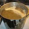 the wort February 2012