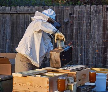 bee-keeper-hive-2