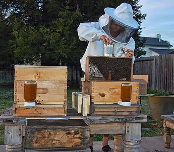 bee-keeper-hive-6