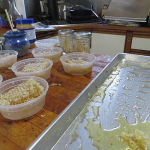 comb honey processing