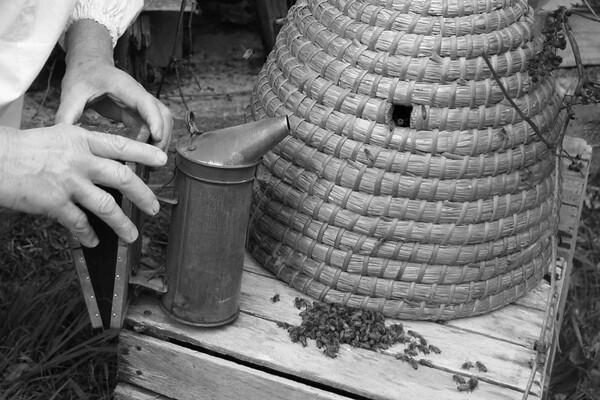 Charles Lorence, Beekeeper, Aurora, Illinois